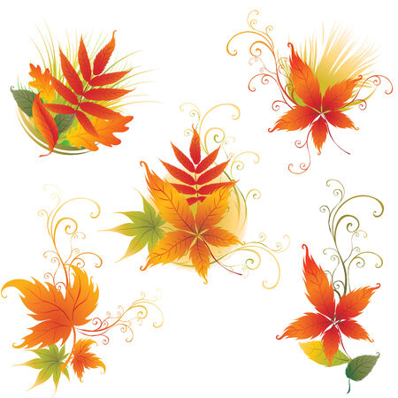 Vector set of colorful autumn leafs design elements. Thanksgiving Stock Vector - 5373305