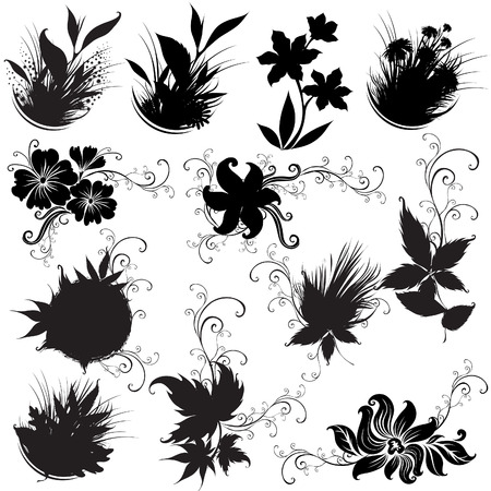 Set of black rose flower design elements Vector