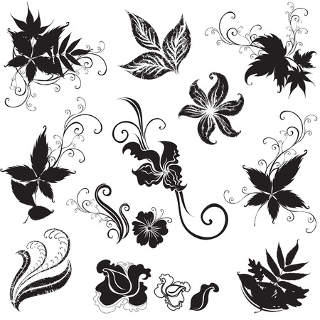 rose bush: Set of black floral design elements (from my  Illustration