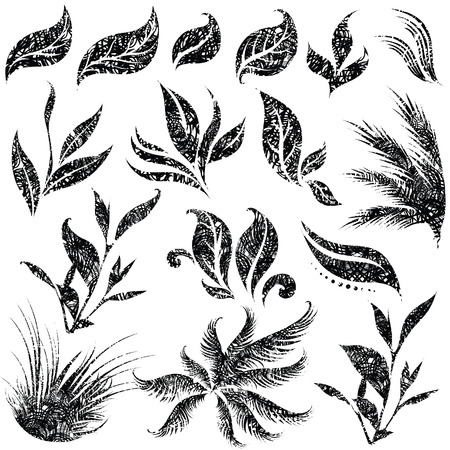 burgeon: set of grunge leafs and flower design elements (from my big