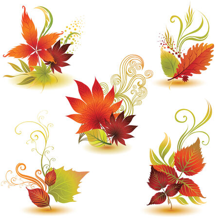 autumn leafs: colorful autumn leafs design elements. Thanksgiving