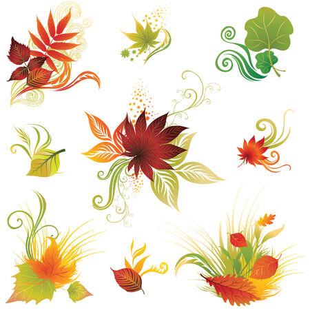 ashes: set 3 of colorful autumn leafs design elements. Thanksgiving Illustration