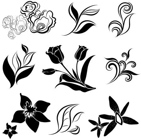 tulipan: Ustaw kwiatu czarny i leafs elementy projektu Ilustracja