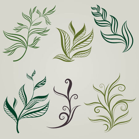 botanics: Set of leafs design elements (from my big  Illustration