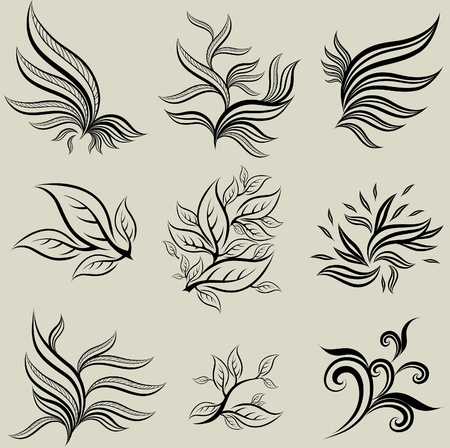botanics: Vector set of leafs design elements (from my big