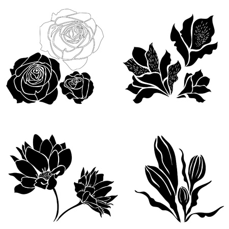 Set of black flower design elements Stock Vector - 9826243