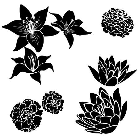 silhouette fleur: Jeu de noirs des éléments de conception de fleurs Illustration