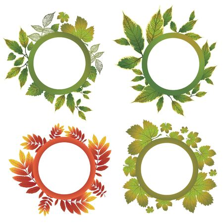 ash tree: Vector set of autumn leafs - design elements. Thanksgiving Illustration