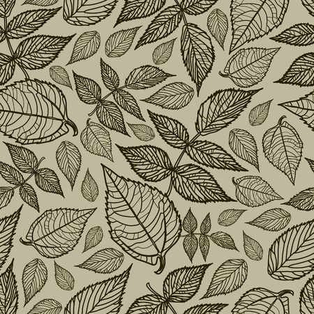 herbarium: Seamless vector grunge autumn leaves background. Thanksgiving (from my big  Illustration