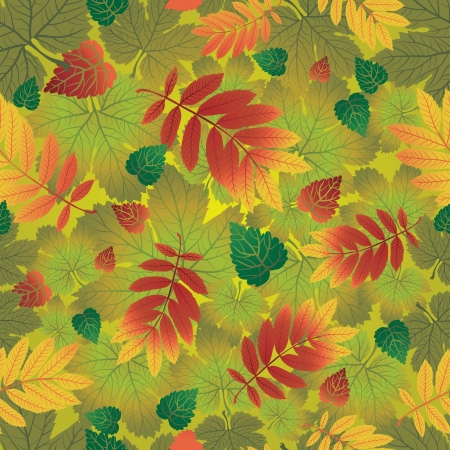 herbarium: Seamless vector autumn leaves background. Thanksgiving (from my big