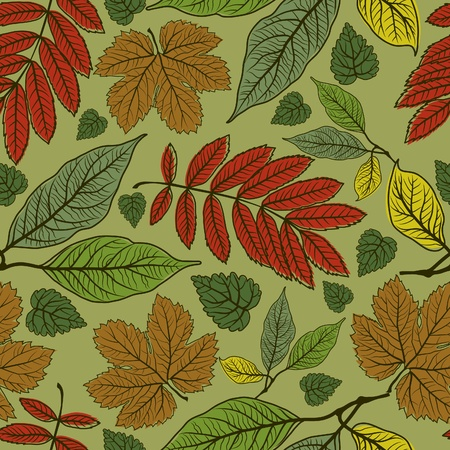 herbarium: Seamless autumn leaves background. Thanksgiving (from my big  Illustration