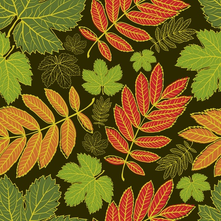 fall trees: Seamless autumn leaves background. Thanksgiving (from my big  Illustration