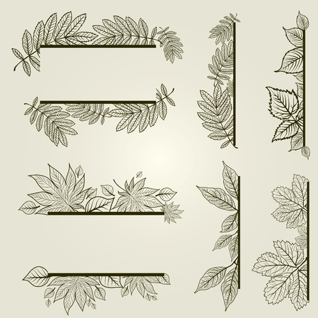 set of vintage design elements with leafs (from my big  Vector
