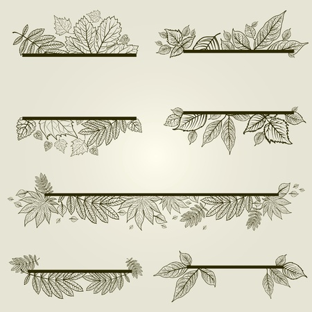 set of vintage design elements with leafs (from my big  Illustration