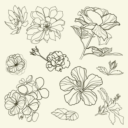 フリーハンドの花柄のデザイン要素のセット  イラスト・ベクター素材