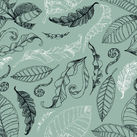herbary: Vector seamless floral pattern with leafs
