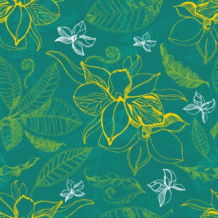 herbary: seamless floral pattern with leafs Illustration