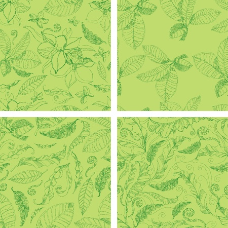 herbary: Vector set of seamless floral grunge patterns with flowers and leafs
