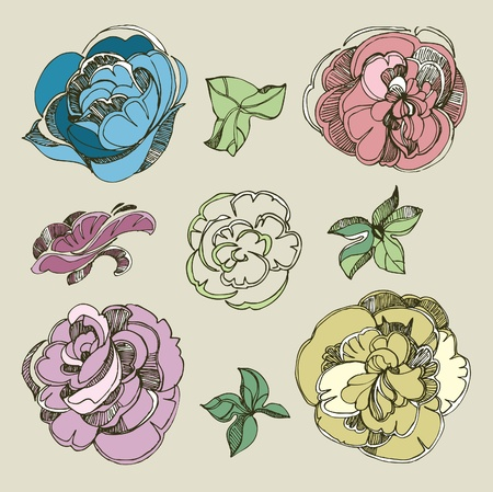 Set of floral design elements - rose flowers Vector