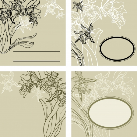hape: set di sfondo vintage con cornici - fiori di orchidea