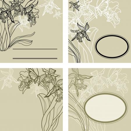 hape: set of vintage background with frames - orchid flowers  Illustration