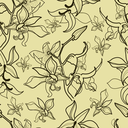 herbary: Vector seamless floral pattern with orchid flowers Illustration