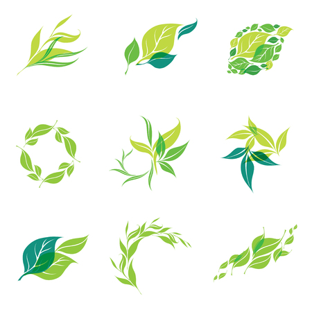 Vector design elements for organic natural 矢量图像