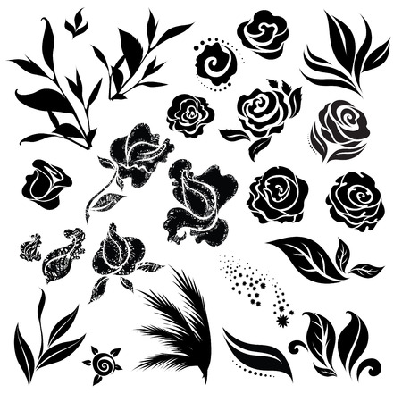 botanics: Set of black floral design elements - sketches of flowers