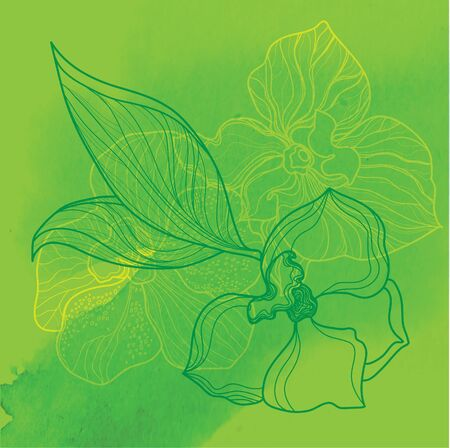 tree leaves: Vector watercolor floral background, freehand drawing - flowers and leafs