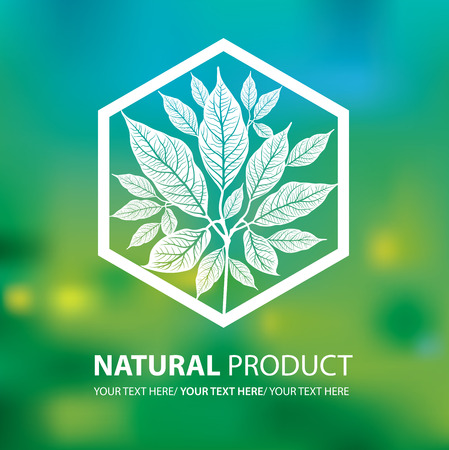 leaf logo: Vector design elements for organic natural logos Illustration