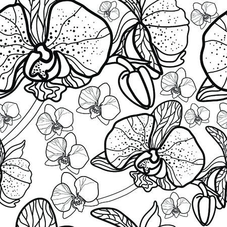 dessin fleur: Vector Seamless floral, dessin à main levée - fleurs et feuilles