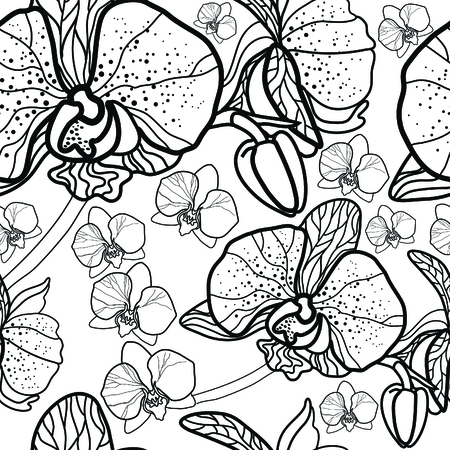 orchid: Vector seamless floral pattern, freehand drawing - flowers and leafs Illustration
