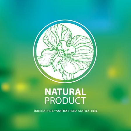 Vector design elements for organic natural logo. Can be used for cosmetics.