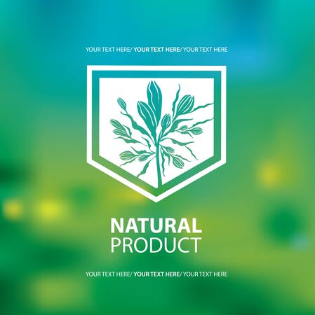 green swirl: Vector design elements for organic natural logo