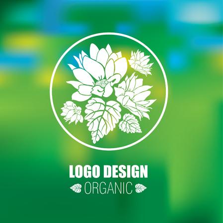 leaf pattern: Vector design elements for organic natural  Illustration