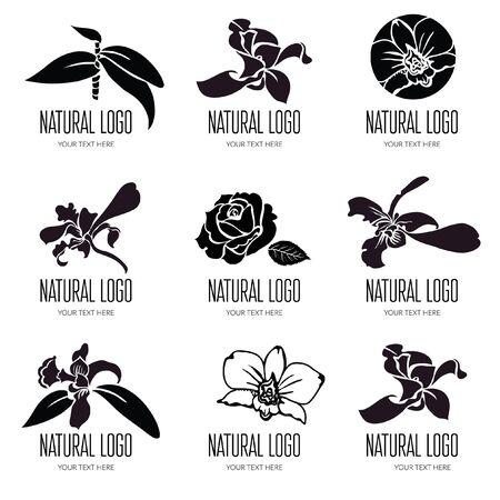 Set of vector floral signage design.