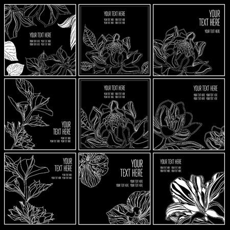 Vector set of stylish black floral background - design elements can be used for invitation, greeting cards. Floral frame Illustration