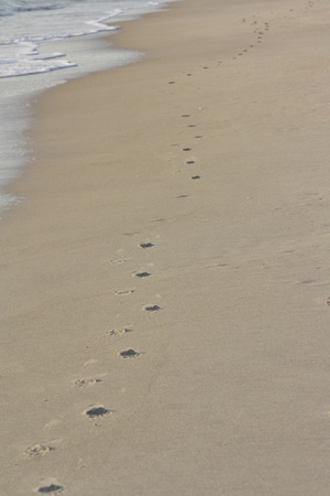 Footprints on the Sand at Spessard Holland Beach Park in Melbourne, Florida Stock Photo