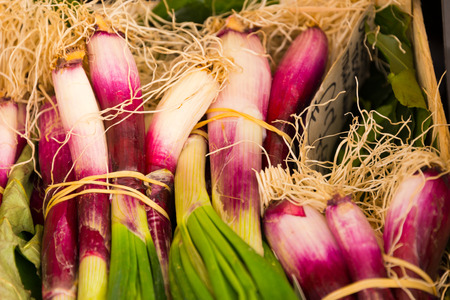 bunches: Scallions on farmers market, rome, italy