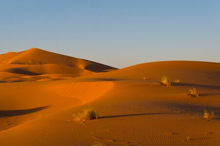 sahara dunes in erg chebbi, morocco Stock Photo