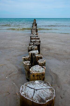 wooden groynes at fischland-darß-zingst peninsula, baltic sea, germany Zdjęcie Seryjne