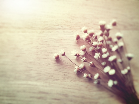 wood craft: A bouquet of dried flowers on wood Craft, filter vintage style, blur