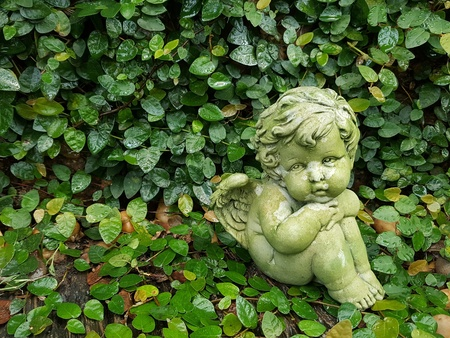 Angel or cupid  statuary made by cement in the garden isolated on leaves background with copy space. She hugged her knees.