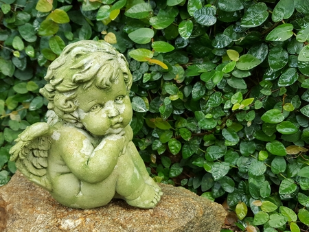 Angel or cupid  made by cement sit on the stone in the garden isolated on leaves    background with copy space.She hugged her knees.