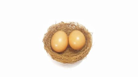 Two eggs in birds nest isolated on white background. Nutritional value