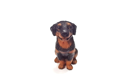 Doll dog  isolated on white background. Model Rottweiler made of resin.
