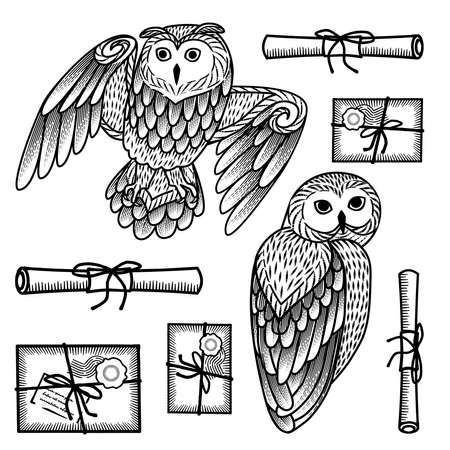 The owl postal service. Monochrome set of owls and letters in the style of engraving. Isolated objects on a white background. Çizim