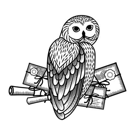 Monochrome card with an owl and letters in the style of engraving. The owl postal service.