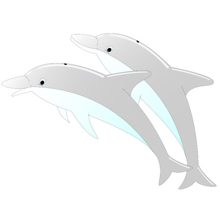 two dolphins on an isolated white background Stock Vector - 8346393