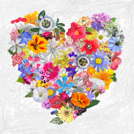 Colorful Heart  made with Mixed Flowers Banque d'images
